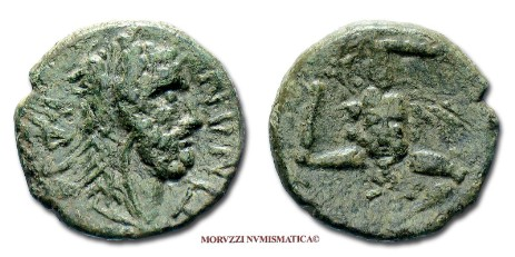 Ancient Gree coins: bronze of Iaetia offered by Arsantiqva